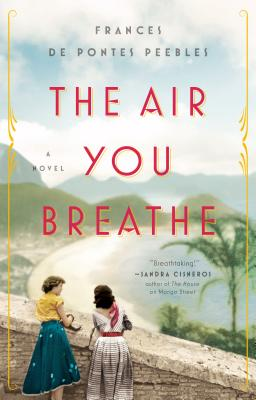 The Air You Breathe: A Novel Cover Image
