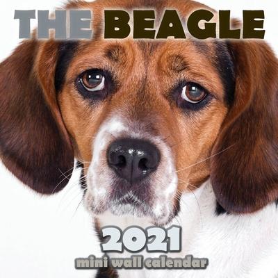 The Beagle 2021 Mini Wall Calendar Cover Image