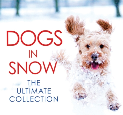 Dogs in Snow: The Ultimate Collection Cover Image