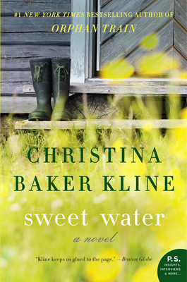 Sweet Water: A Novel Cover Image