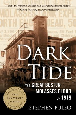 Dark Tide: The Great Boston Molasses Flood of 1919 Cover Image