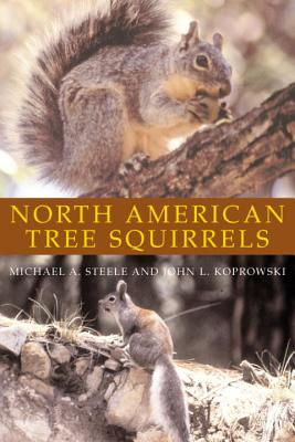North American Tree Squirrels Cover