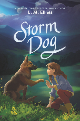 Storm Dog Cover Image