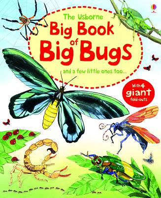 The Usborne Big Book of Big Bugs: And a Few Little Ones Too... Cover Image