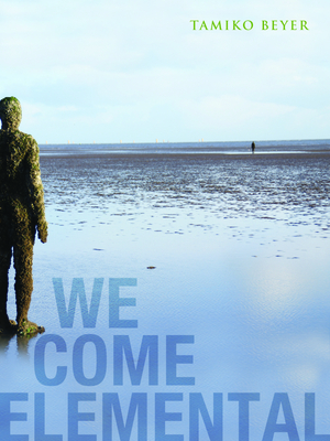 We Come Elemental Cover Image
