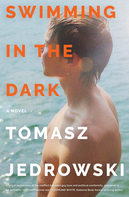 Swimming in the Dark: A Novel Cover Image