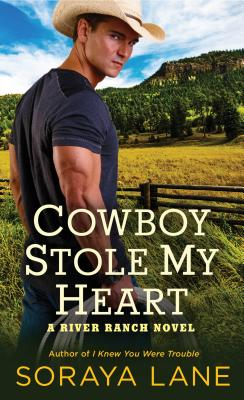 Cover for Cowboy Stole My Heart
