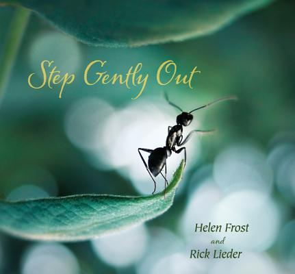 Step Gently Out Cover