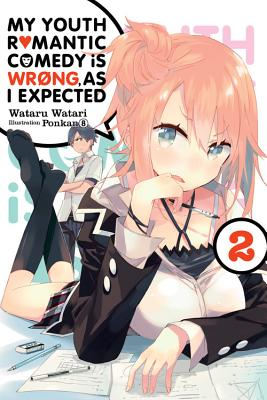My Youth Romantic Comedy Is Wrong, as I Expected, Vol. 2 (Light Novel) Cover