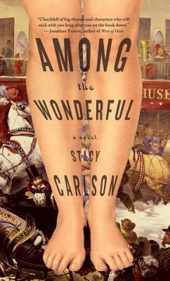 Among the Wonderful Cover