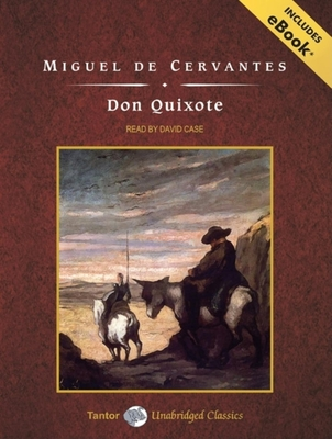 an analysis of the novel the adventures of don quixote by miguel cervantes Complete summary of miguel de cervantes' don quixote de la mancha enotes plot summaries cover all the significant action of don quixote de la mancha.