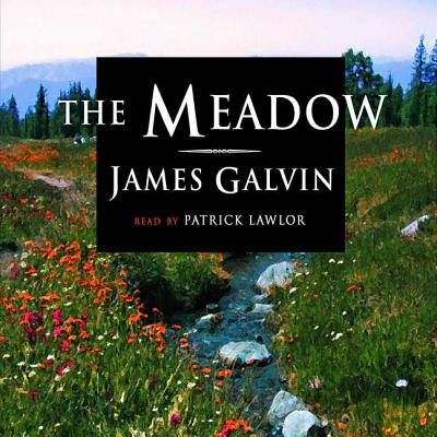 The Meadow Cover Image