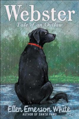 Webster: Tale of an Outlaw Cover Image