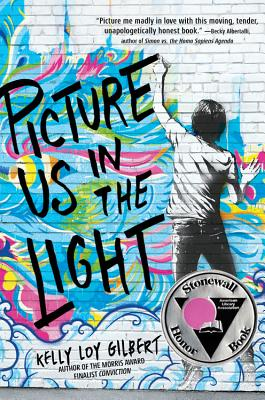 Picture Us In The Light (Hardcover) | novel