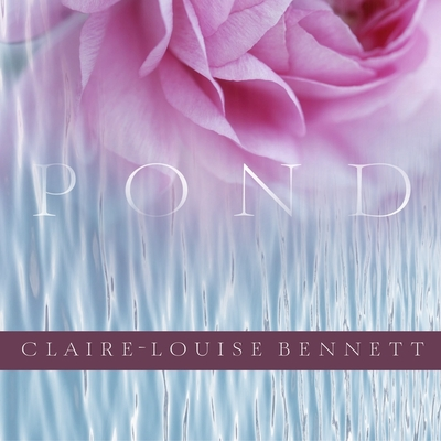 Cover for Pond