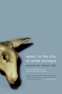 Return to the City of White Donkeys Cover
