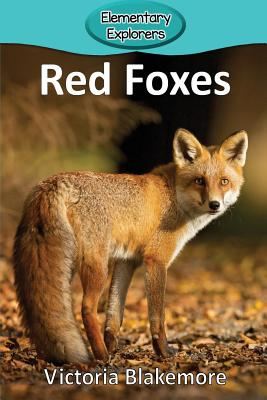 Red Foxes (Elementary Explorers #61) Cover Image