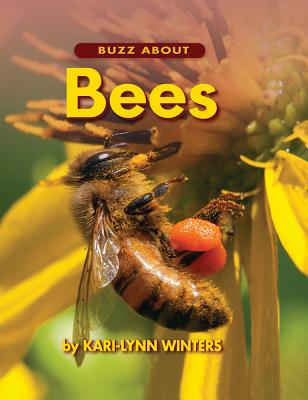 Buzz about Bees Cover