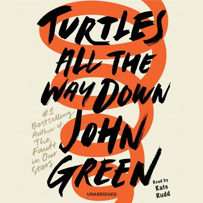 Turtles All the Way Down Cover Image