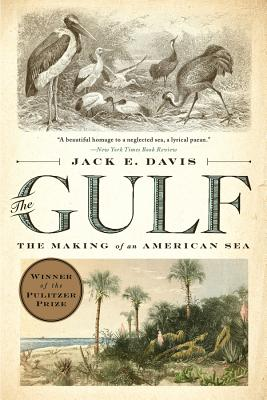 The Gulf: The Making of an American Sea Cover Image