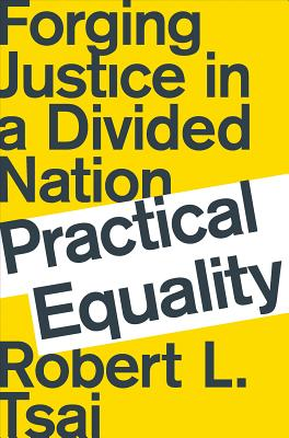 Practical Equality: Forging Justice in a Divided Nation Cover Image