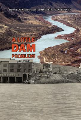 A Little Dam Problem Cover Image