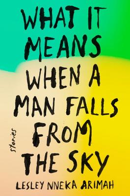 Cover for What It Means When a Man Falls from the Sky