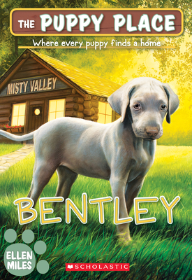 Bentley (The Puppy Place #53) Cover Image