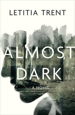 Cover for Almost Dark