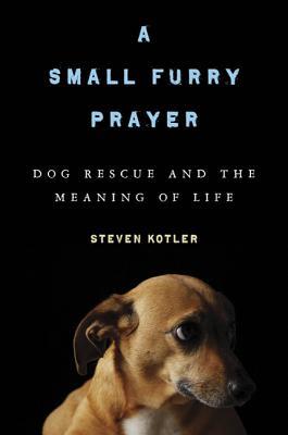 A Small Furry Prayer Cover