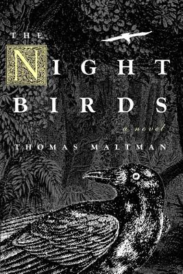 The Night Birds Cover