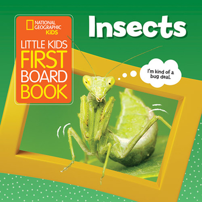 Little Kids First Board Book: Insects Cover Image