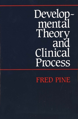 Cover for Developmental Theory and Clinical Process