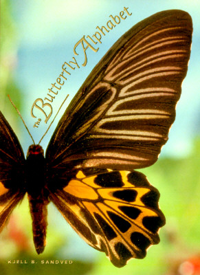 The Butterfly Alphabet Cover