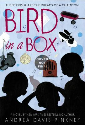 Bird in a Box Cover