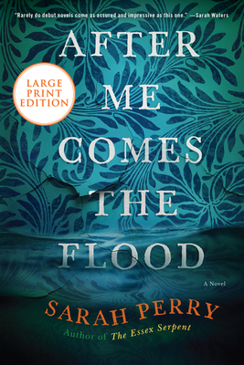 After Me Comes the Flood: A Novel Cover Image