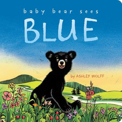 Baby Bear Sees Blue Cover Image