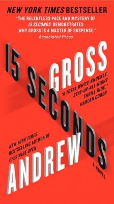 15 Seconds Cover Image