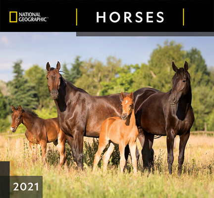 Cal 2021- National Geographic Horses Wall Cover Image