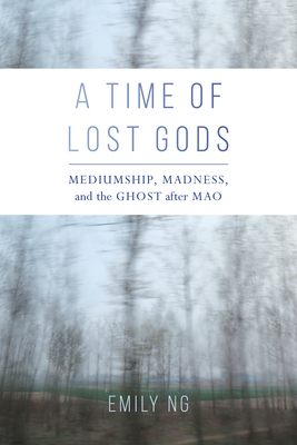 Cover for A Time of Lost Gods