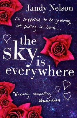 Sky Is Everywhere Cover