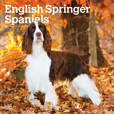 English Springer Spaniels 2021 Square Cover Image