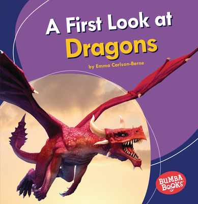 A First Look at Dragons Cover Image