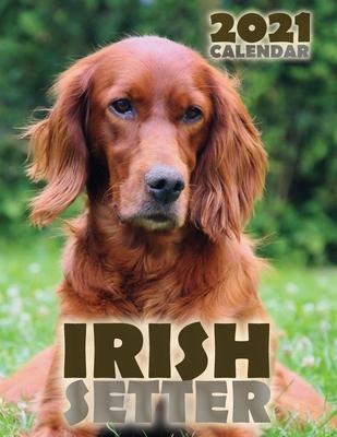 Irish Setter 2021 Calendar Cover Image