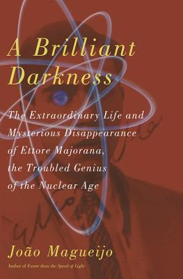 Cover for A Brilliant Darkness