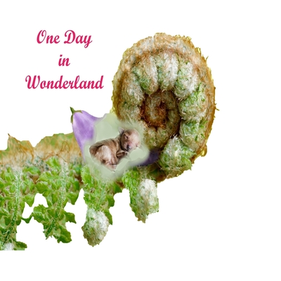 One Day In Wonderland: Magic of advanture in wonderland.Colorful Nature. Cover Image