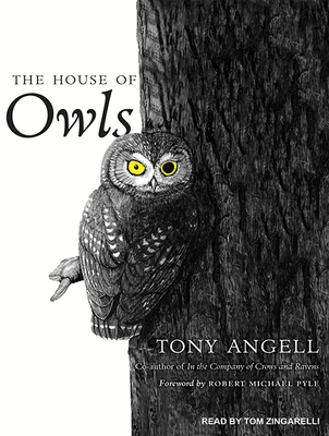 Cover for The House of Owls