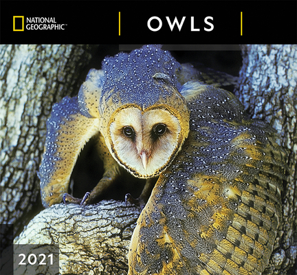 Cal 2021- National Geographic Owls Wall Cover Image