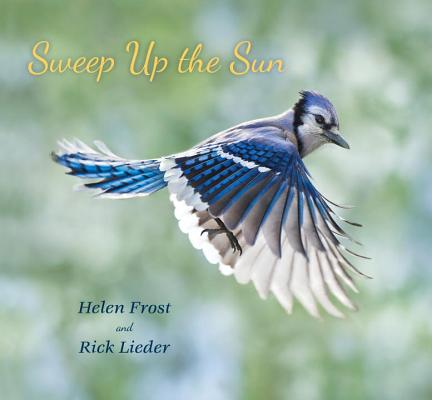 Cover for Sweep Up the Sun