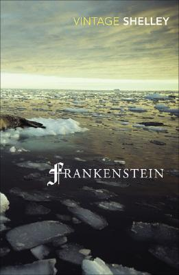 Frankenstein: Or the Modern Prometheus (Vintage Classics) Cover Image